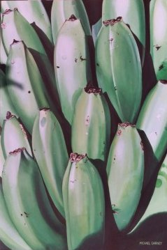 Green Bananas II